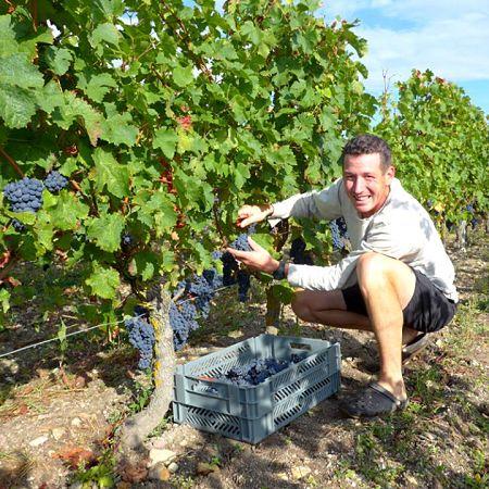 Aurélien Revillot vigneron à Bourgueil