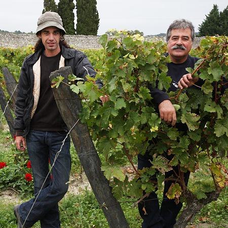 Rodolphe et Pierre Gauthier vignerons à Bourgueil