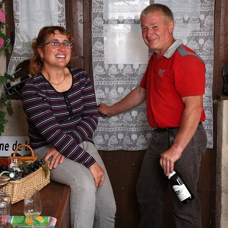 domaine vernellerie vins bourgueil