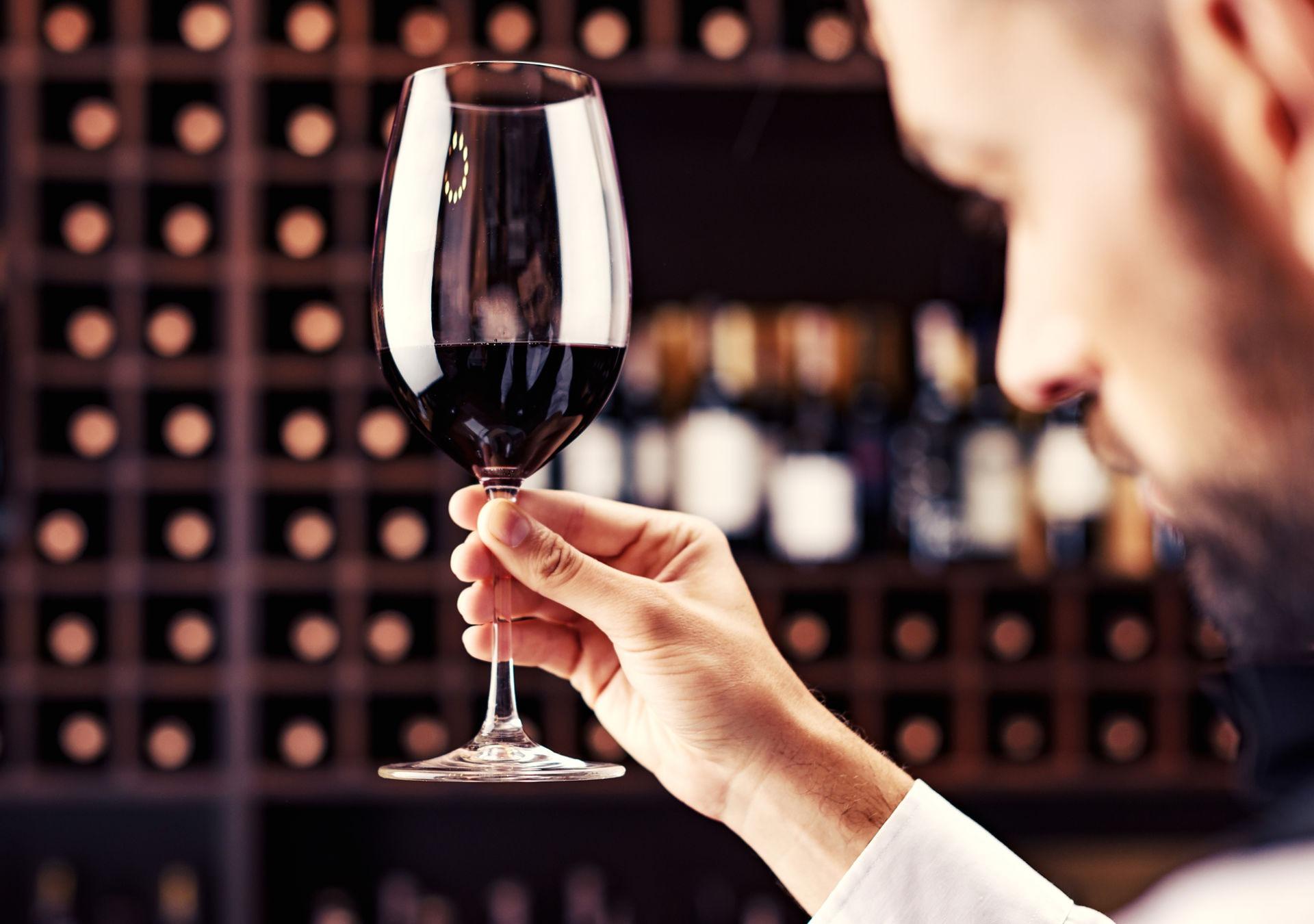 degustation vins de bourgueil cabernet franc 1920 1350